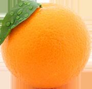 100% Pure Orange Juice